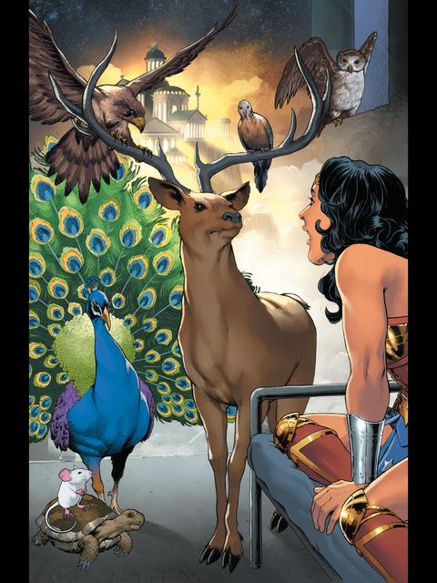 The gods visit Wonder Woman