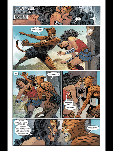 Wonder Woman fights Cheetah